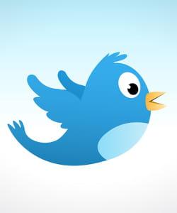 twitter est devenu incontournable dans certains métiers.
