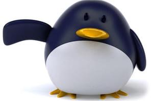 Linus Torvalds a-t-il subi des pressions de la NSA ?