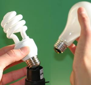 les ampoules fluocompactes ont connu un démarrage poussif mais sont aujourd'hui