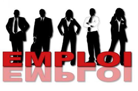 Informatique: des offres d'emploi toujours plus nombreuses