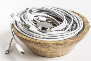 Câbles Apple: sélection des meilleurs modèles selon les produits