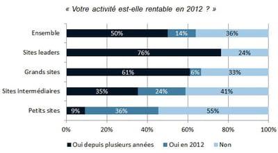 rentabilité de l'activité des e-commerçants français en 2012
