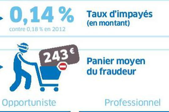 E-commerce : 2 milliards d'euros de tentatives de fraude en 2013