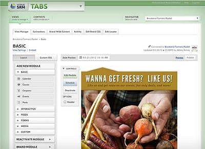 vitrue tabs permet de personnaliser des modules de contenus facebook pour