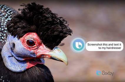 Pour créer Bixby, Samsung a patiemment dévoré des start-up IA