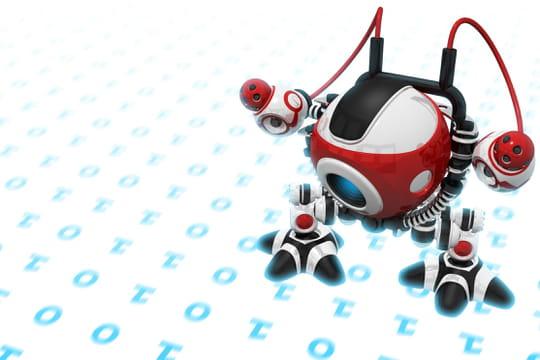 Bot: définition