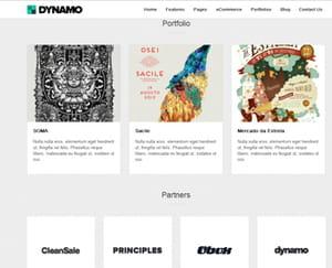 ce à quoi peut ressembler une partie de la page d'accueil avec le thème dynamo.