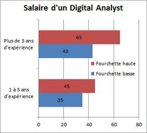 digital analyst jusqu 39 55 000 euros de salaire par an. Black Bedroom Furniture Sets. Home Design Ideas