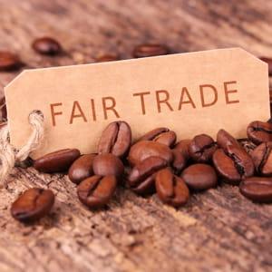 par rapport à nos voisins européens, le commerce équitable est très peu