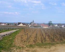 le village de vosne-romanée entouré par les vignes.