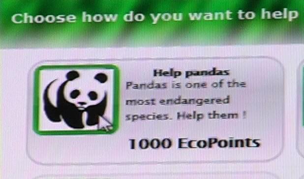 Hop cube : protéger les pandas