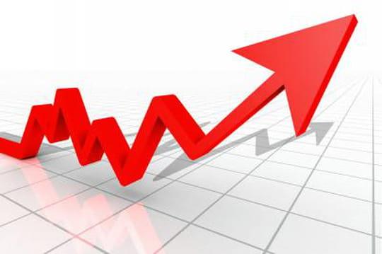 Rentabiliweb renoue avec la croissance en 2013