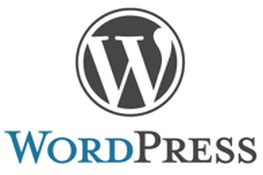 WordPress utilisé par près de la moitié du top 100 des blogs américains