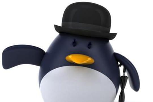 Google Penguin2.0 : une liste de 40sites impactés en France