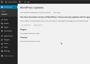 pouvoir activer les mises à jour automatiques de wordpress est un atout, mais