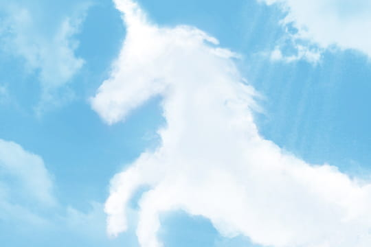 Les start-up SaaSsont les licornes de demain