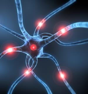 exonhit développe des thérapeutiques innovantes contre la maladie d'alzheimer.